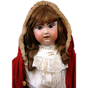 "Huge Stunning Chunky 33"" Jumeau Bebe French Antique Doll in Classic Antique Costume for the Holidays!!"