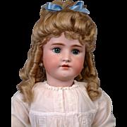 "Incredible 30"" Handwerck / Simon & Halbig Antique Girl Doll in Stunning Antique Costume"