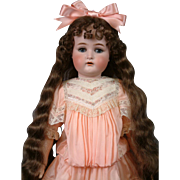 "Kammer & Reinhardt / S&H 28.5"" Antique Bisque Girl  ""Beatrice"" with Floor-Length Curly Wig"