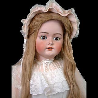 "HUGE Handwerck / Halbig Antique Bisque Child Doll 35"" in Lacy Costume"