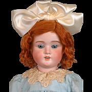 """Schoneau & Hoffmeister 1909 25"""" Antique Bisque Doll in Silk Dress"""