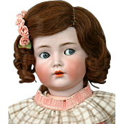 """Antique Size 12 HAND-TIED, Side-Parted Brunette Human Hair Wig for Antique French or German Dolls 19-24"""" in size"""
