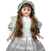 """Schoneau & Hoffmeister 27"""" Antique Bisque Doll on Kidskin Body with Composition Arms"""