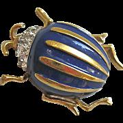 Panetta Blue Scarab Beetle Bug