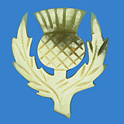 Carved Horn Scottish Thistle Pin