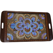 Iridescent Butterfly and Marquetry Wood Brazilian Tray