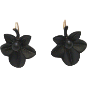 Jet Black Oak Leaf Shaped Earrings with 14K Gold Wires
