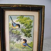 Signed framed Original Watercolor painting blue birds