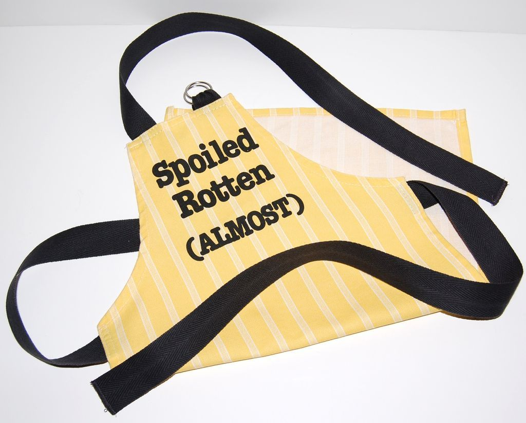 Vintage 'Spoiled Rotten' Child's Kitchen Apron