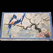 1930s Schrafft's ~ Bluebird & Cherry Blossom Chocolate Box