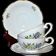 Europa Bouquet ~ 4-Pc Czech Porcelain Cup & Saucer Set