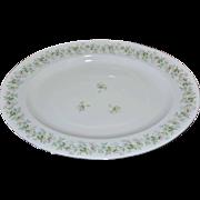 Johann Haviland Bavaria FOREVER SPRING Daisy White Porcelain Platter
