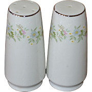 Haviland Bavaria FOREVER SPRING Daisy White Porcelain Salt & Pepper Shakers