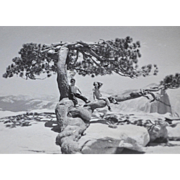 """Circa 1949 Original Yosemite Landscape w/ Children 4.5"""" B & W Photo"""