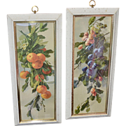 "Turner Mfg Large 22"" Hollywood Regency Pair of Fruit Prints in Original Speckled White Wood Frames"
