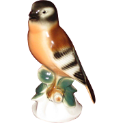 Wagner & Apel Colorful Porcelain Bird, German
