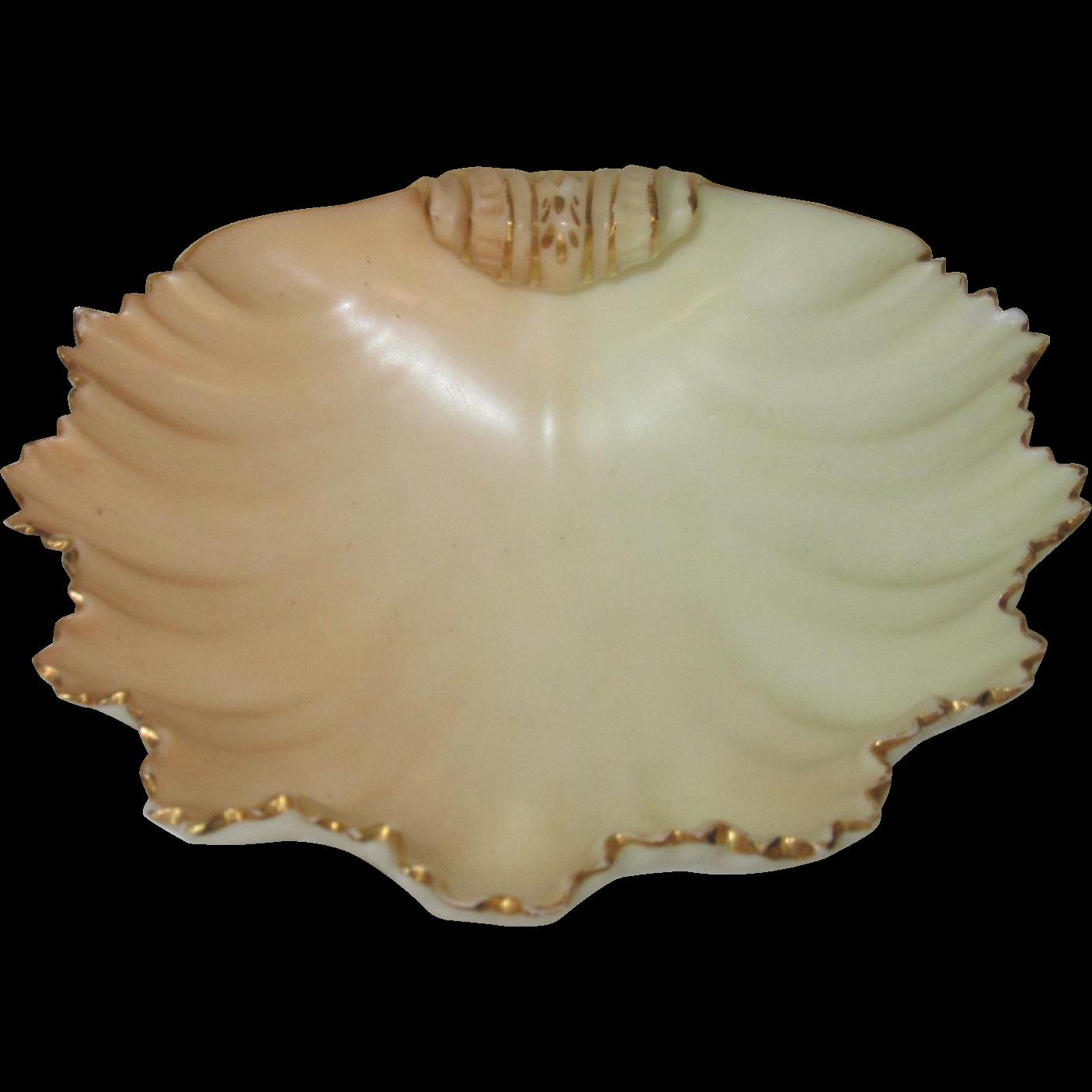 Royal Worcester Shell-Shaped Blush Ivory Bonbon Dish
