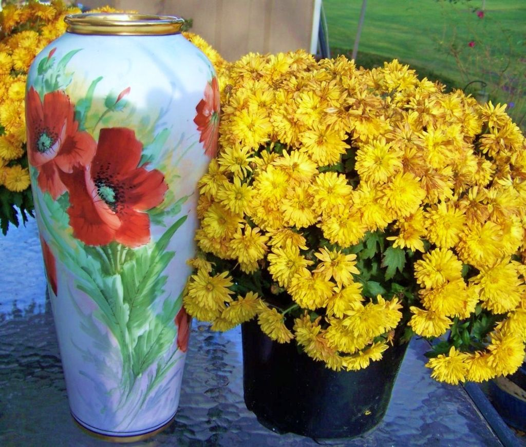 "Exquisite Czechoslovakia 1920's Hand Painted Vibrant ""Burnt Orange Poppies"" 14-1/2"" Vase"