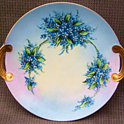 "Vibrant & Attractive Bavaria 1900'S Hand Painted ""Forget Me Not"" 11-1/8"" Plate"