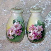 "Beautiful Vintage 1900's Bavaria Hand Painted Vibrant ""Wild Roses"" Pair of Shakers"