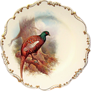 "Exceptional Cauldron England 1920's Hand Painted ""Prince of Wales Pheasant"" 9"" Plate by the Listed Artist, ""Joseph Birbeck"""