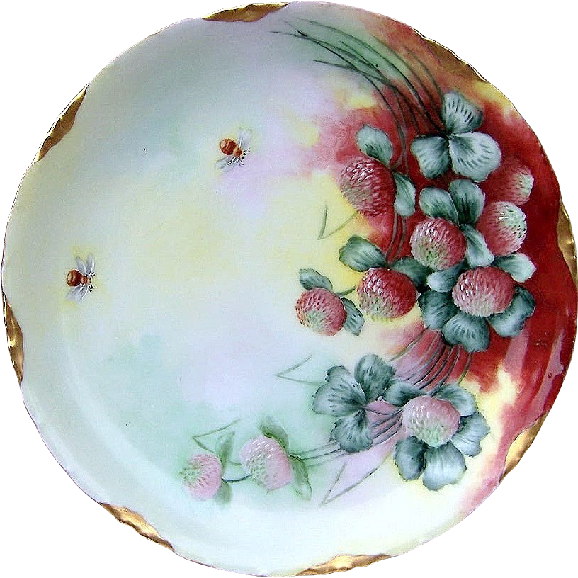 """Outstanding Rosenthal Bavaria 1900's Hand Painted """"Wild Flowers"""" 8"""" Floral Plate with Honey Bees by the Artist, """"M. Pijan"""""""