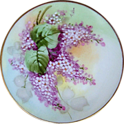 "Gorgeous JC Bavaria 1910 Hand Painted ""Wisteria"" Plate by the Pickard Artist, ""John Thonander"""