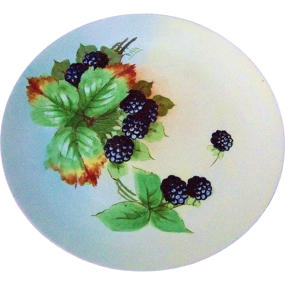 "Beautiful Bavaria 1915 Hand Painted ""Blackberry"" 8-7/8"" Plate by the Artist, ""VAN"""