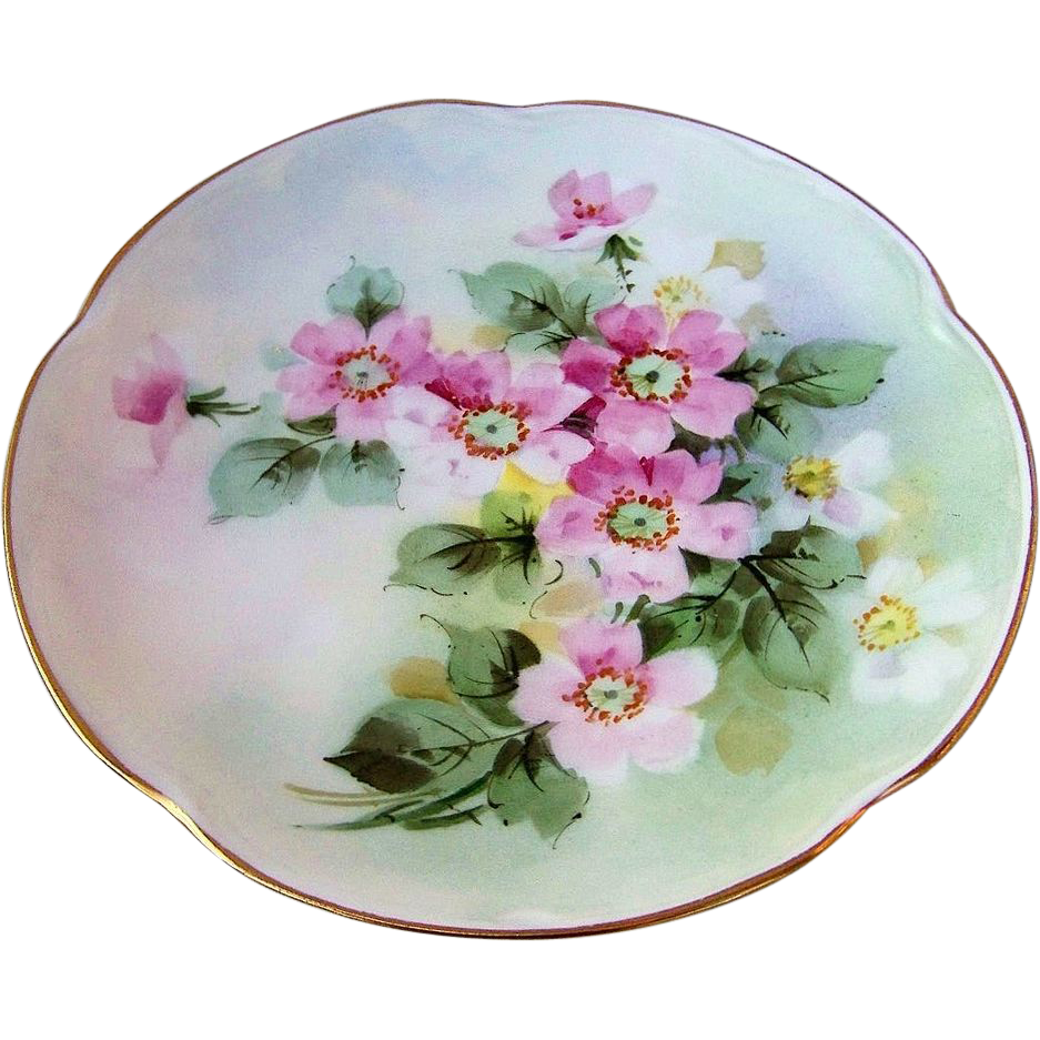 "Stunning JC Bavaria 1900's Hand Painted ""Wild Roses"" 8-7/8"" Scallop Plate"