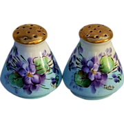 "Beautiful Bavaria 1900's Hand Painted ""Violets"" Salt & Pepper Shakers by the Pickard Artist, ""Minnie Luken"""