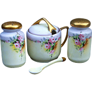 "Rosenthal Selb Bavaria 1920's Hand Painted ""Petite Pink Roses"" 3-Pc Floral Condiment Set"
