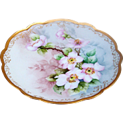 """Beautiful Vintage MZ Austria 1900's Hand Painted """"Wild Pink Roses"""" 7"""" Floral Plate"""
