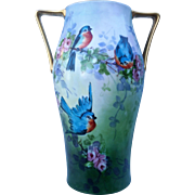 """Gorgeous H & Co. Selb Bavaria 1900's Hand Painted """"Bluebird & Pink Roses"""" 13-1/4"""" Scenic Vase by the Artist, """"Anna Tejcek"""""""