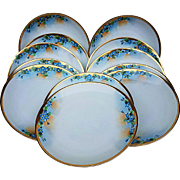"Attractive Hutschenreuther Selb Bavaria 1900's Hand Painted Set of 12 ""Forget Me Not"" 8-1/2"" Floral Plates"