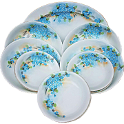 "Attractive Vintage American Decorated 1900's Hand Painted 11 Pc ""Forget Me Not"" Platter, Bowls, & Berry Set"