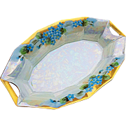 "Delightful Vintage Bavaria 1900's Hand Painted ""Forget Me Not"" 7-5/8"" Floral Relish Tray"