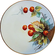 "Beautiful Bavaria & Edward Donath Studio of Chicago 1906 Hand Painted ""Cherries"" Fruit Plate by the Artist, ""EMY"""