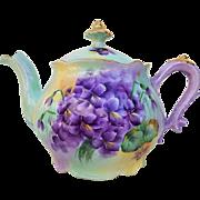"Gorgeous Vintage Bavaria 1900's Hand Painted ""Violets"" Floral Tea Pot by the Artist, ""Blanche Johnson"""