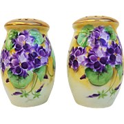 "Gorgeous Vintage Bavaria 1900's Hand Painted ""Violets"" Floral Salt & Pepper Shakers By Artist, ""E.O."""