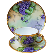 """Beautiful Havilland & Limoges France 1900's Hand Painted Vibrant """"Violets"""" 3-Pc Floral Cup, Saucer, & Plate Set by the Artist, """"H.R. Baker"""""""