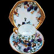 """Fabulous MZ Austria Vintage 1900's Hand Painted """"Blackberry"""" 3-Pc Cup, Saucer, & Plate Fruit Decor Set by the Artist, """"L. Davis"""""""