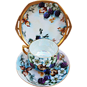 "Fabulous MZ Austria Vintage 1900's Hand Painted ""Blackberry"" 3-Pc Cup, Saucer, & Plate Fruit Decor Set by the Artist, ""L. Davis"""