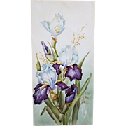 "Stunning Limoges France 1900's Hand Painted ""Iris"" 11-7/8"" x 5-3/4"" Floral Plaque"