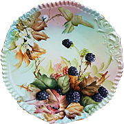"Gorgeous T & V Limoges France Vintage 1900's Hand Painted Vibrant ""Blackberry"" Floral & Berry 9-3/8"" Plate by ""Ester Miler"""