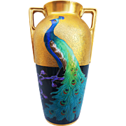"Heinrich & Co. Selb Bavaria & Pickard Studio of Chicago 1925 Hand Painted ""Peacock on Black & Gold Encrusted"" Scenic Vase by ""Curtis Marker"""