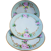 "Attractive Thomas Bavaria 1900's Hand Painted ""Petite Pink Roses"" Set of 3 Floral Plates"