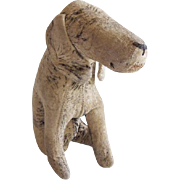 Early Straw Filled Primitive Dog