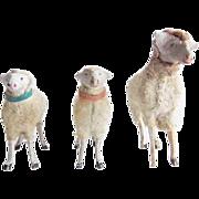 Antique German Putz Wooly Sheep Flock of 3