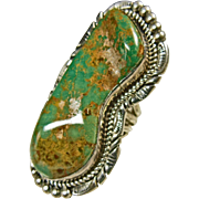 Emerald Valley Turquoise Sterling Silver Ring