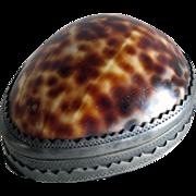 Rare Antique 18TH C GEORGIAN COWRIE Shell & Pewter Snuff Box, London c1780